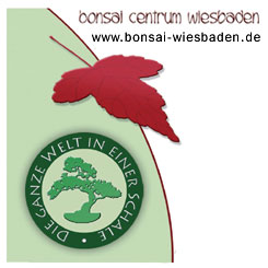 Bonsai-Centrum-Wiesbaden