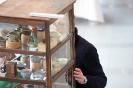 Der Bonsaiarbeitskreis Weserbergland richtete 2017 die BCD Bundesversammlung im Weserbergland Zentrum in Hameln aus. Die [SHOHIN PASSION] 2017 findet diesmal im Rahmen der Bundesversammlung des Bonsai-Club Deutschland in Hameln im Weserbergland Zentrum statt. Fotos: Anke Sundermeier - foto&grafik_11