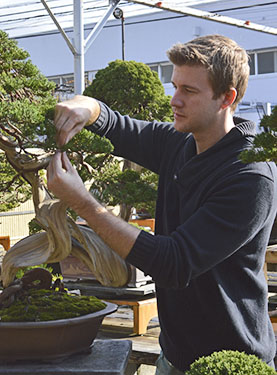 Advanced Bonsai Course mit Bjorn Bjorholm