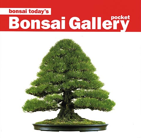 Pocketbonsai.jpg