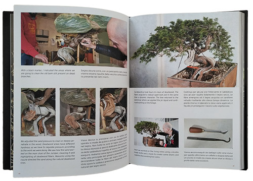 Stemberger Bonsai Dream Book inside web