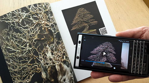 Stemberger Bonsai Dream QR Code