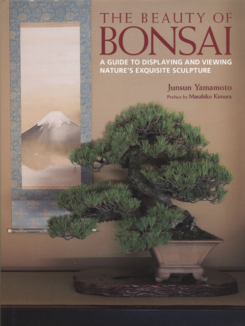 The Beauty of Bonsai